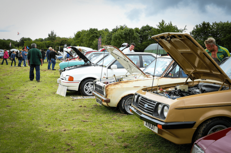 classic motor show walsall arboretum 14th july 2019 19