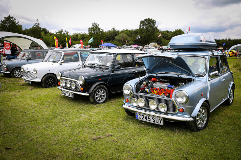 classic motor show walsall arboretum 14th july 2019 36