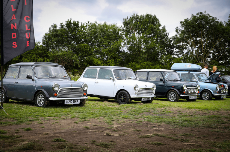 classic motor show walsall arboretum 14th july 2019 40